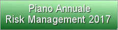Piano annuale risk management 2017